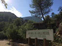 Rennrad Rundfahrt Costa Blanca ab/bis Denia