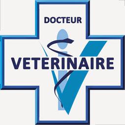 vétérinaire comportementaliste canin