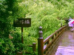 東京写真こおろぎ橋