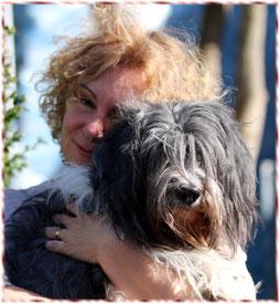 Schapendoeszüchter Doris Schindler in Mering hat hin und wieder Schapendoeswelpen zu vergeben