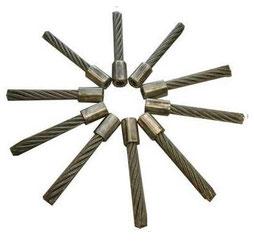 Stahlborsten zu Wildkrautbürsten