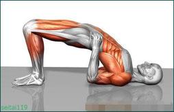 札幌市-ケーゲル体操と同じく骨盤底筋を鍛え尿漏れや失禁に有効