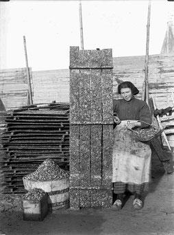 naissain huitres plates récolté sur des plateaux en bois au siècle dernier dans la rivière d'Auray