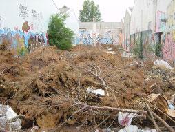 Enlèvement de déchets verts
