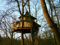 Treehouse in Picardy in France
