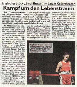 Kritik Kronen Zeitung