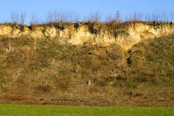 Steilwand (Foto: B. Budig)