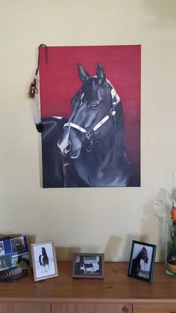 Acrylgemälde Pferd, Paint Horse, von Hufspuren