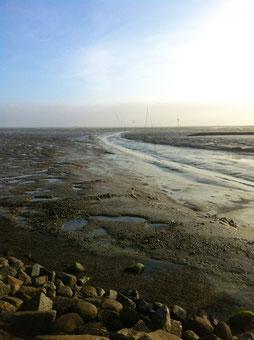 Ebbe am Hafen Oland