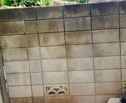 練馬桜台ガーデニングショップ施工前のブロック塀です。20〜30代の女性が入居していらっしゃるマンションの塀で、入口付近の雰囲気が暗いので明るくして行きます。 お庭の施工承ります。練馬桜台ガーデニングショップかのはの