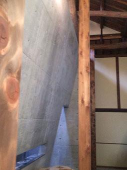 ANDO MUSEUM 外からの光を反射する斜めの壁