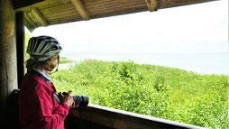 Urlaub  Mecklenburgische Seenplatte Ausflugsziele