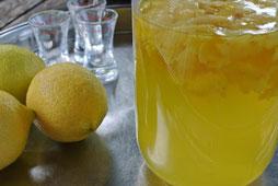 Limoncello einfach selber machen