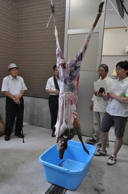 「田舎暮らし」食肉加工場