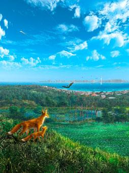 知多半島生態系ネットワーク協議会イメージ