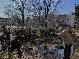ビオトープの池に水を補給する