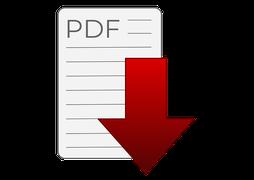 Summary Report zum Download