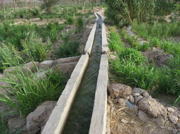 Séguia, Canaux d'irrigation