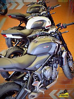 Die neue Triumph Trident 660 bei Motorrad-Center Dreispitz, Triumph Dreispitz, Binzen