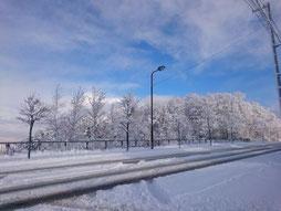 札幌 雪景色