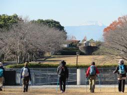 富士山に向かう(宝野公園) 桜の名所