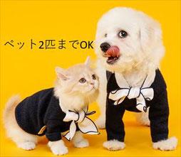 川崎区 ペット可物件 犬 猫 1LDK 賃貸マンション コンフォート