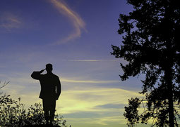 chiropractic for veterans