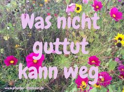 Kann weg Blumen Glücklichsein