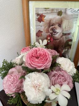 Sさん、お花ありがとうございました