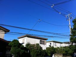 昨夜の星空もきれいでしたね。そして、今朝の青空、気持ちもすっきり!!