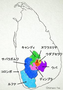 スリランカでは紅茶産地を大きく7つに分けています