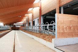 Gussasphalt Landwirtschaft, Stallboden