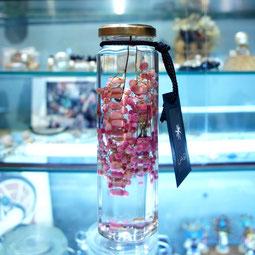 lab bottle plants