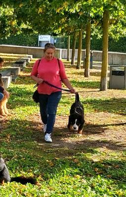 26.09.2020 - mit der Hundeschule in Preetz beim Stadttraining.