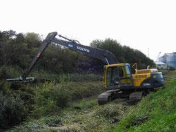 Landschaftspflege und Renaturierung