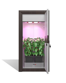 automatic LED Growbox Set Growschrank grow cabinet