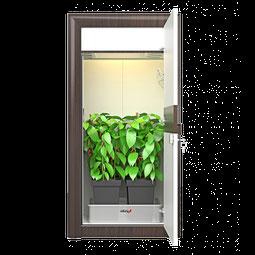 automatic LED Growbox Set Growschrank