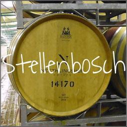 Zuid Afrika staat bekend om zijn goede wijnen. Het gebied rond Stellenbosch telt heel veel wijngaarden. Een rondleiding en proeverij hoort erbij!