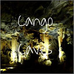 Voor stalagmieten en stalagtieten moet je in de Cango Caves zijn. Een wandeling door de grotten met prachtige druipsteenformaties.