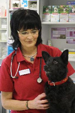 In unserer Kleintierpraxis werden Ihre Lieblinge liebevoll und professionell betreut