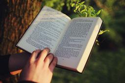 lecture au calme