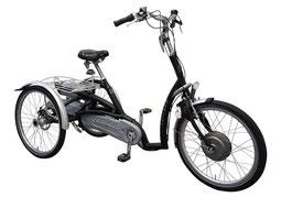 Dreirad Maxi Comfort von Van Raam