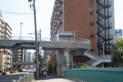 東横フラワー緑道を直進