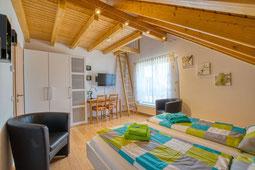 Apartment / Ferienwohnung Elisabeth Bondorf