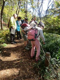 ●大人も子どもも植物観察に夢中(11月15日自転車散歩ツアー)