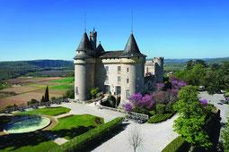 Château Mercuès von oben.
