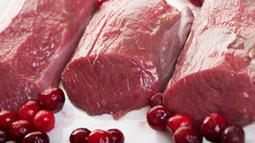 Fleisch aus Forstbetrieben Wild Schlachtung