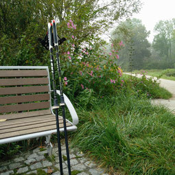 Foto, welches eine Bank zeigt an einem Feldweg mit Nordic Walking Stöcken, die angelehnt sind.