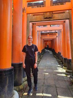 Shrine Path in Kyoto (je weiter oben desto weniger störende Touristen im Bild lol) aber auch Shrines hat man irgendwann mal genug gesehen