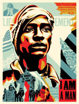 Shepard Fairey, Voting Rights are Human Rights, 2020